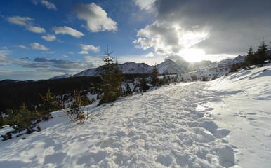 Fototapete - Winter in Polish High Tatra mountains