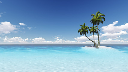 beach palm coconut trees - CG