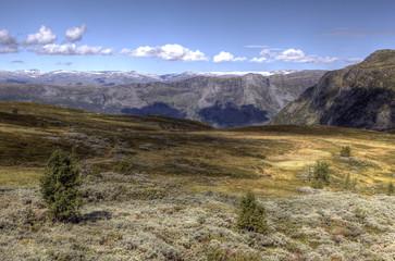Scenic Drive Norway