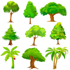 vector illustration of collection of Tree