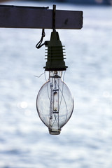 fishing lamp bulb