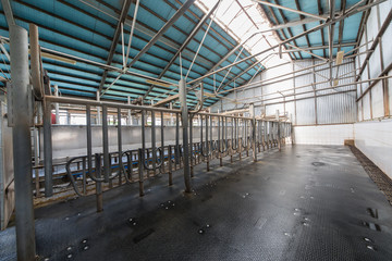 Empty hangar with equipment for milking cows