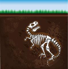 Dinosaur fossil, vector illustration