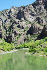 Wall Mural - Gunnison river in Black canyon of the Gunnison Natl Park, CO