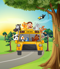 A group of animals travelling