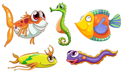 Five sea creatures