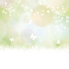 Colorful summer spring background with flowers and butterfly