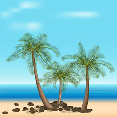 palm trees with green leaves