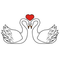 swans vector drawing