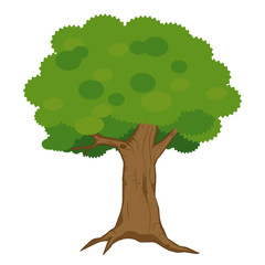 tree isolated illustration