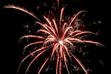 Fireworks on black night sky.