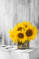 background still life flower sunflower wooden white vintage