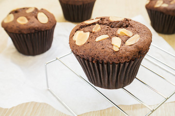 Chocolate cupcake with almond