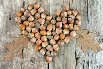 Acorns forming a heart on a wooden background