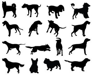 Silhouettes dog breeds, vector