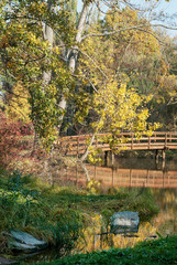 Wooden bridge and lake in autumn nature