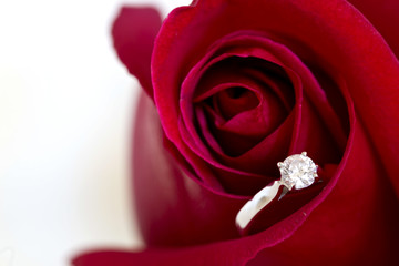 Jewelry, red rose