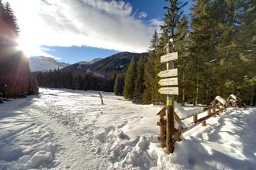 Fototapete - Trek paths plates in Polish Tatra mountains