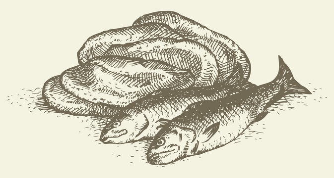 Vector still life from the biblical story: loaves and fishes