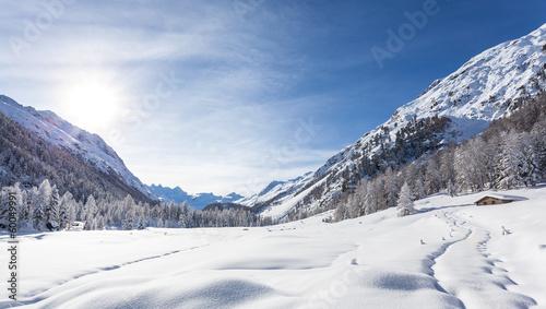 горы высота снег  № 385097 бесплатно