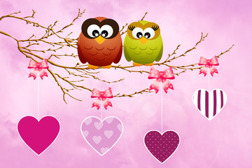 Owls celebrate Valentine's Day