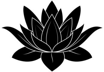 Lotus Silhouette