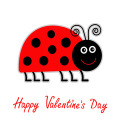 Cute cartoon red lady bug. Isolated. Happy Valentines Day card.