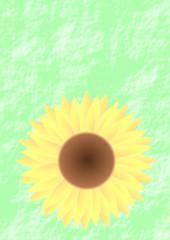Karte Sonnenblume auf grünem Hintergrund