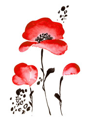 Watercolor scarlet flowers