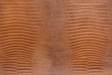 Macro of shinny brown leather