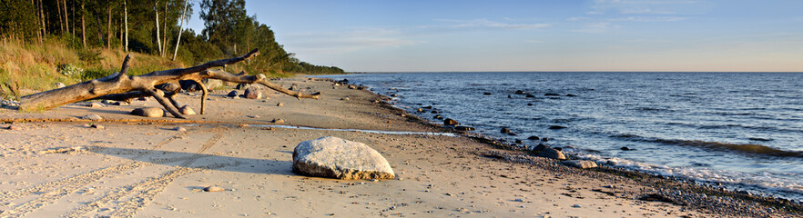 Stony beach at the gulf of Riga, Baltic Sea, Latvia Wall mural