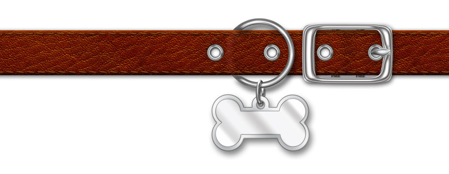 Brown Leather Collar With Tag