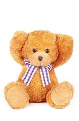 Fototapeta teddy bear can't hear obraz