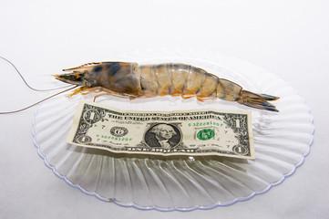 jumbo shrimp compared to dollar bill