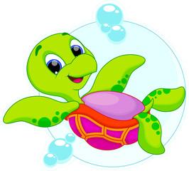 cute turtle is swimming upside down