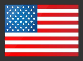 United States Flag. Vector illustration