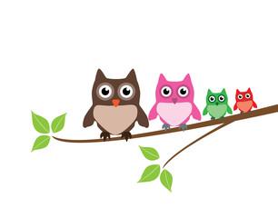 vector cute owl family