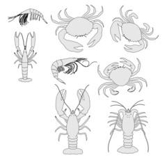 cartoon image of crustacean animal set