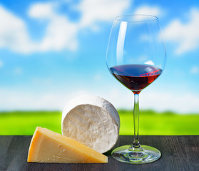 Cheese and glass of wine on nature background