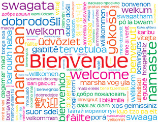 "Carte ""BIENVENUE"" (accueil service clients contact satisfaction)"