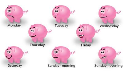 Working week of pigs