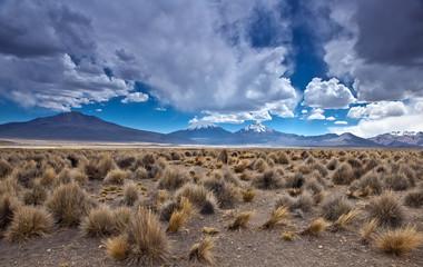 Bolivia - volcano