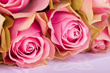 pink roses on withe tablecloth
