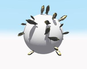 planeta penguin