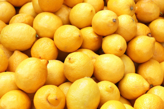Lemons - Citrons