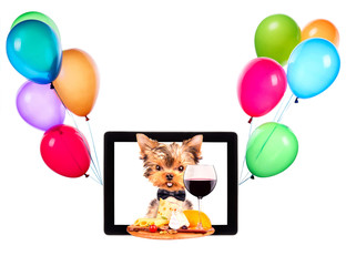 dog with food and balloons on tablet