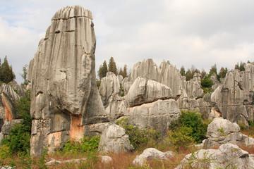 Shi Lin Stone forest national park. Yunnan. China.