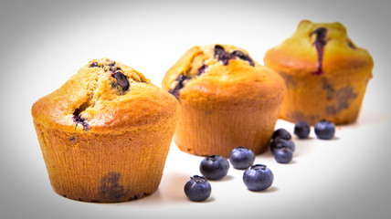 Wall Mural - Blueberry muffins isolated