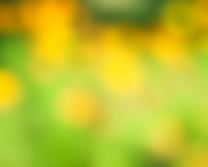 Abstract nature background, selective focus
