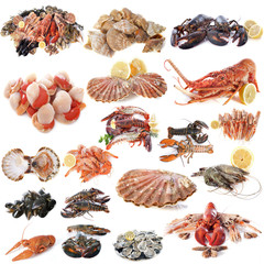Zelfklevend Fotobehang Schaaldieren seafood and shellfish